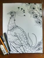 Peacock by SunsetFlareX