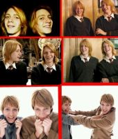 Twins Collage by shannybabe123