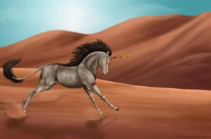 Desert run by Seranalu