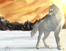 Ferris the Timber Wolf. by CheshireWolf97