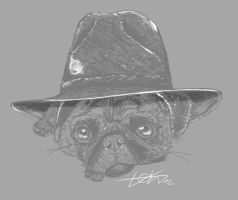Pug with Hat by todmanhero