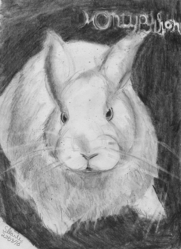 Monty Python Bunny by SulaimanDoodle