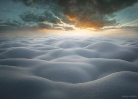 The First Snow by borda