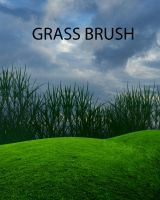 GRASS BRUSH by Moonglowlilly