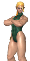 Cammy on Guard! by virtualsoles