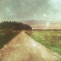 country road by Amalus