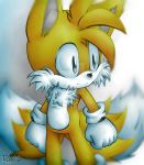 Miles ''Tails'' Prower by Y0ku