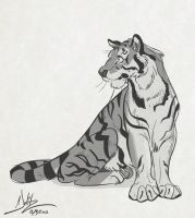 Tiger Sketch by dodgyrommer