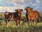 cows by ENERGIA1