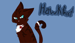 Simple Hawkfrost by AshfursSoul