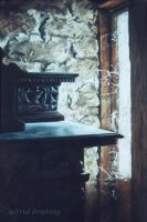 Website- PASTEL PAINTING by AstridBruning