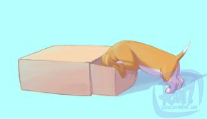 Puppy Surprise Box 3 by ritam