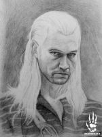 Geralt by DeatHerald
