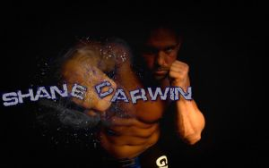 Shane Carwin Wallpaper by PMat26oo