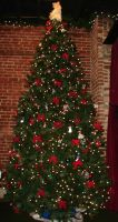 Decorated Angel Christmas Tree by FantasyStock