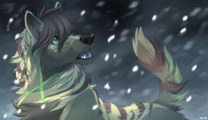 IT'S SNOWIN by Vanimute