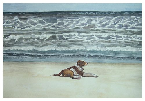 The Dog and the Sea I by agataylor