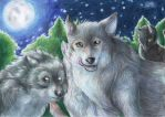 Wolf pack by FuriarossaAndMimma