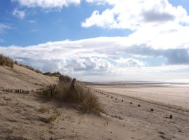 camber Sands4 by legley