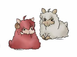 Cotton Sheep Adopts OTA {CLOSED} by MacMacaroni