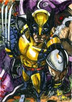 Wolverine Sentinel Sketch Card by DKuang