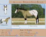 PGB Example Ref - CURRENT by AniaJag