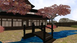 Dojo Stage by RuchiiP