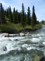 Alaska River 21 by prints-of-stock