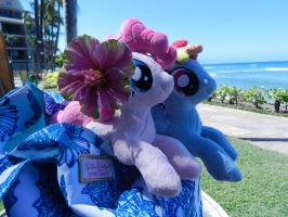 Pinkie and Rainbow in hawaii by EquestriaPlush