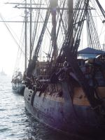 Port or Starboard? by LinzStock