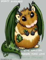 Hamster Dragon - REBORN by raiyue