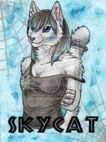 Skycat by Kitsune-Nyx
