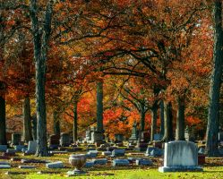 Fall Cemetery II by redwolf518