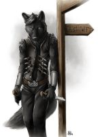 Fear my knives by Nimrais