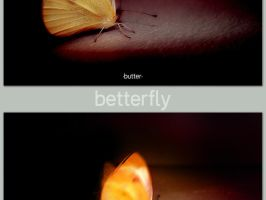 betterfly by furryomnivore