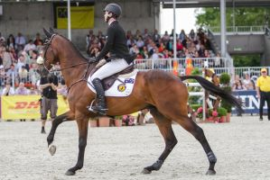 3DE Show Jumping Phase Stock 46 by LuDa-Stock