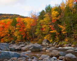 Autumn Along the Swift River by LakesideMaiden