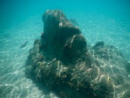 Bermuda 061  Underwater Stocks by FairieGoodMother
