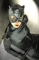 Meow Catwoman by edusek