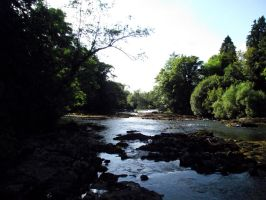 River Bonet by D1scipl31974