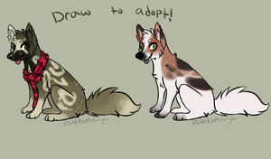Draw to adopt - Closed - by PointAdoptsforyou