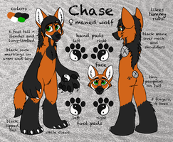 Chase Stylized Ref by aisu-isme