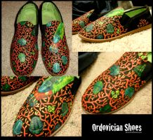ordovician shoes by Banvivirie