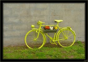 A yellow bicycle by J-Y-M