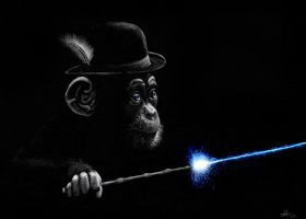 Primate Pocus by TheMozzy