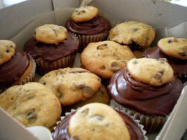 Chocolate Chip Cookies and Cupcakes by Lauren-Broflovski