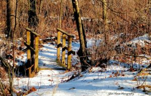 Bridge to New Things by GlassHouse-1