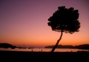 Mallorcan Sunset. by J-Payden