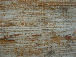 Cedar Wood Siding Texture 4 by FantasyStock
