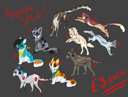 adoptable left-overs SALE by Rinermai